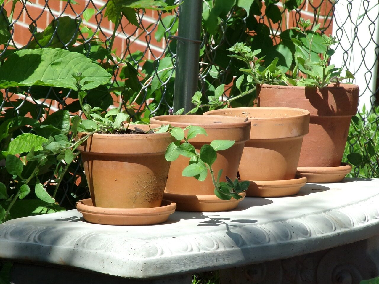 Clay Terracotta pots on a stone bench