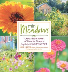 Mini Meadow Book Cover
